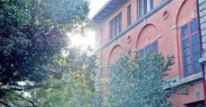 中国春天最美10座大学,好想恋爱